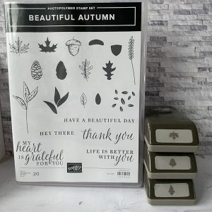 beautiful autumn, stampin up, stampin treasure, tweedehands, gebruikt, bundle, bundel, productpakket